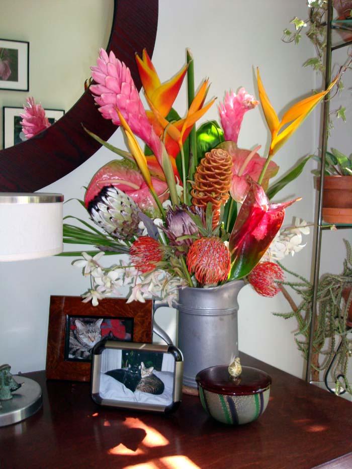 Indoor Plant Arrangements Gardens By Robert Urban Flower