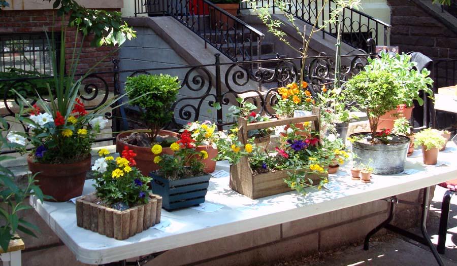Gardens by robert urban flower arrangements indoor for Indoor flowers and plants
