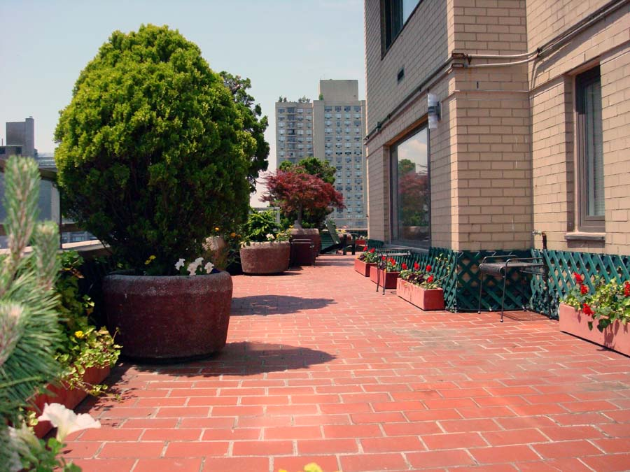 Gardens by robert urban townhouse backyard spaces for Terrace trees